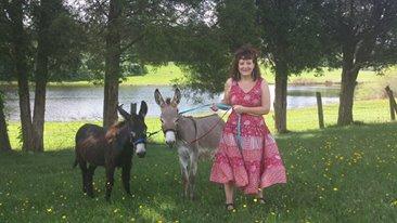 walking the donkeys